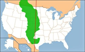 The 100th Meridian in History
