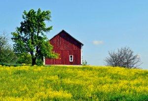 9 Unique Agritourism Ideas