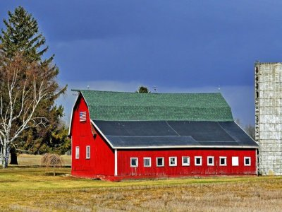 Pros and Cons of Selling Direct on the Farm