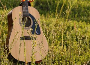 Pros and Cons of Laminated Woods for Guitarists