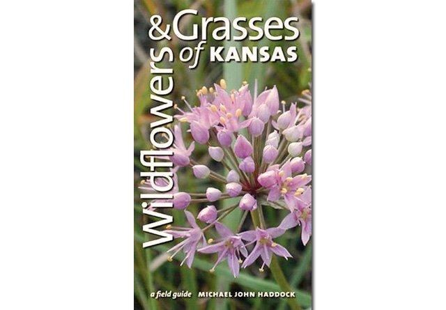 Wildflowers & Grasses of Kansas