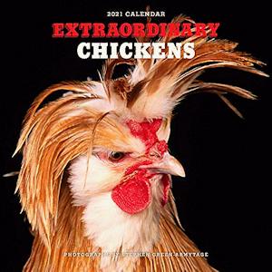 Extraordinary Chickens Calendar 2021