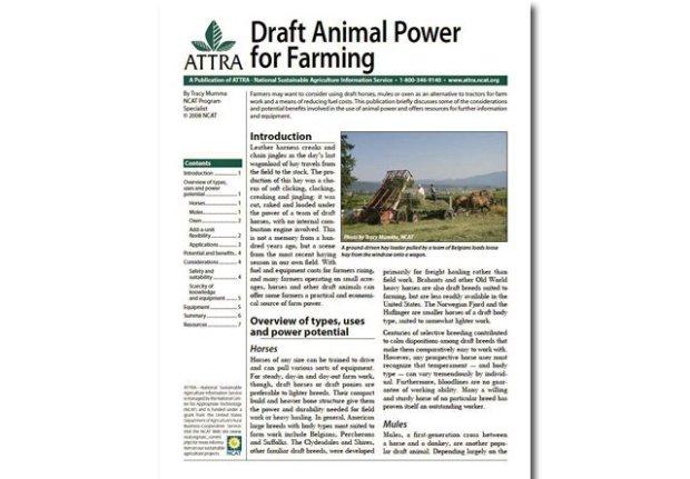 Draft Animal Power for Farming