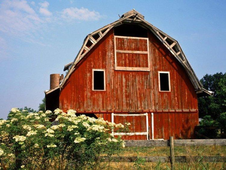 Farming Principles