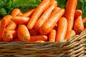 The Organic Price Premium