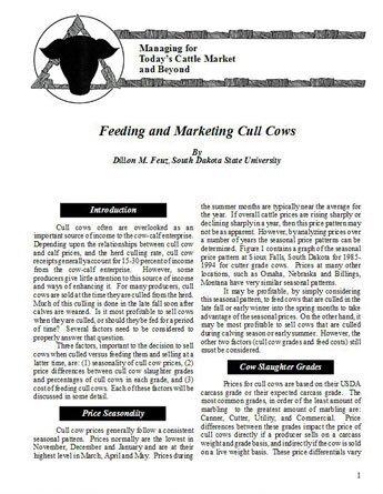 Feeding and Marketing Cull Cows