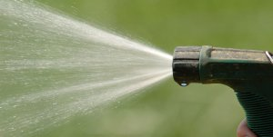 How Often Should a Garden Be Watered?