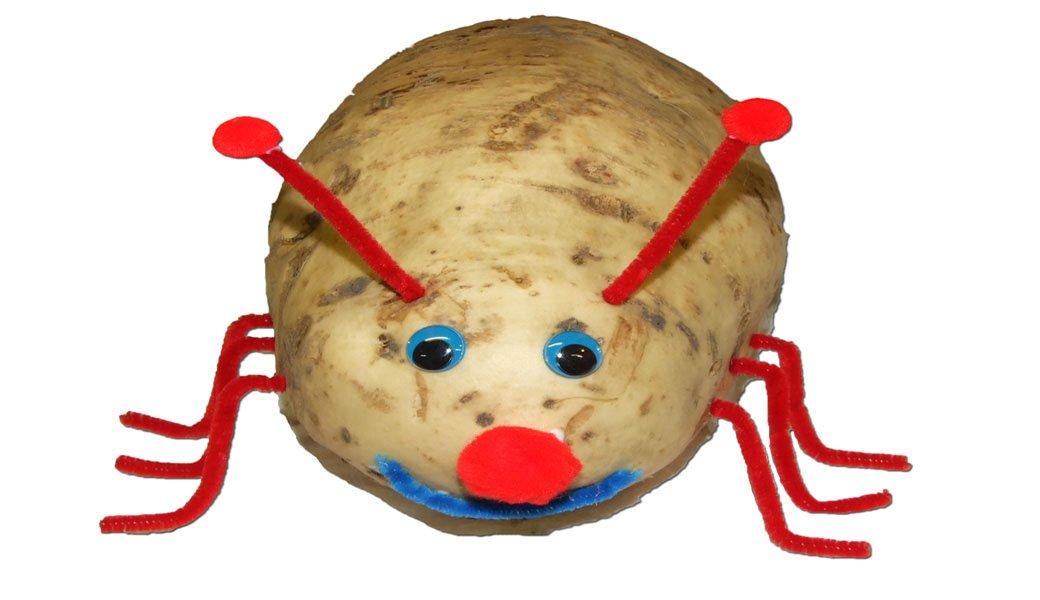 How to Make a Sweet Potato Beetle