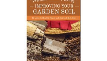 Improving Your Garden Soil
