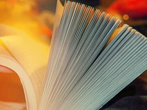 Top 10 Books for Beginning Farmers