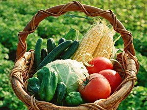 Quote of the Week: Vegetables