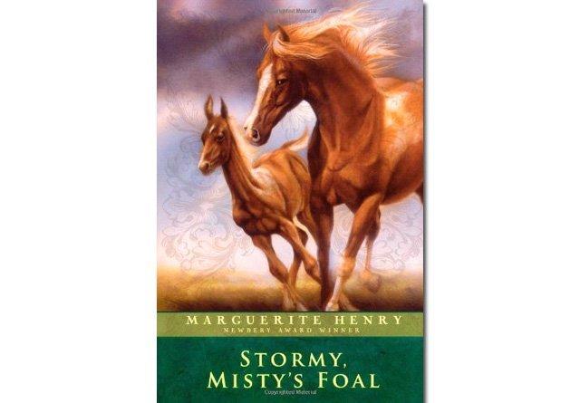 Stormy, Misty's Foals