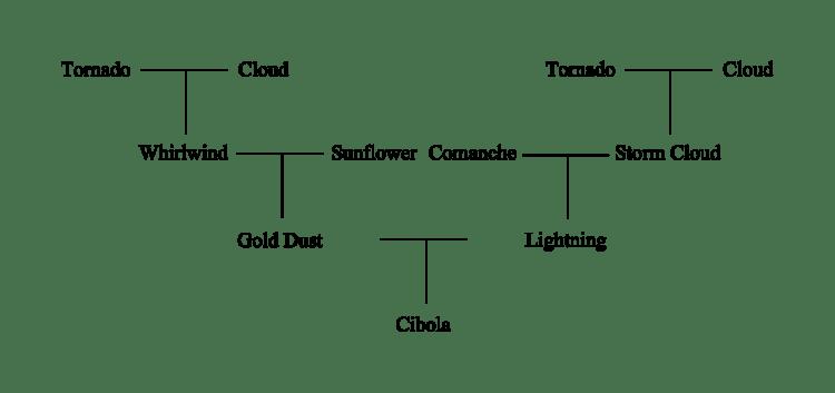 Horse pedigree to illustrate linebreeding