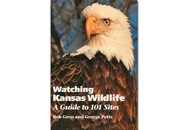 Watching Kansas Wildlife