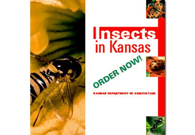 Insects in Kansas