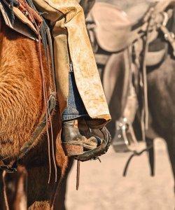 Why Cowboys Sang