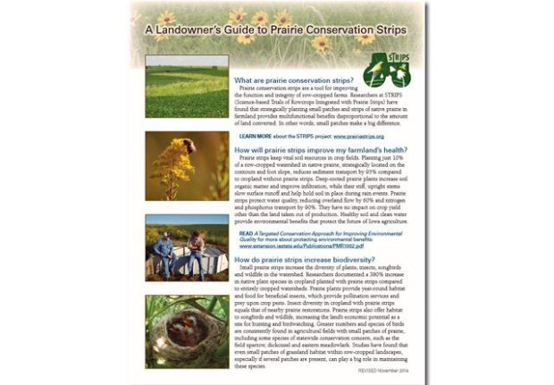A Landowner's Guide to Prairie Conservation Strips