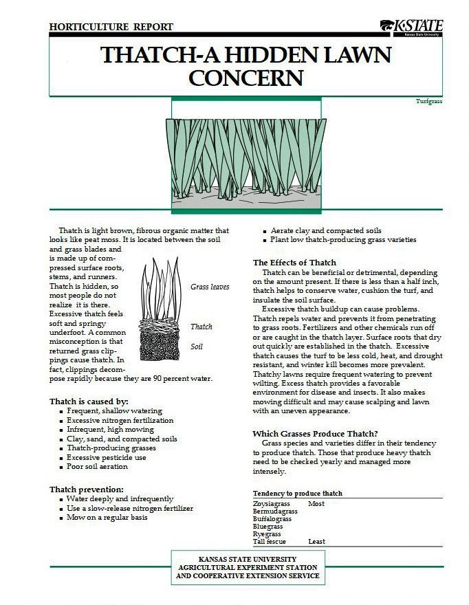 Thatch—A Hidden Lawn Concern