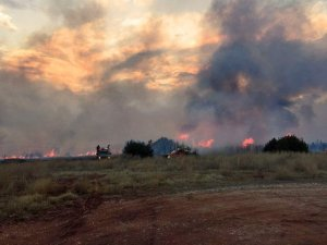 Anderson Creek Fire Nearly Contained