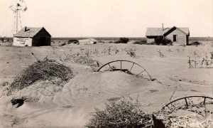 The Agricultural Adjustment Act in the Great Plains: Part 1