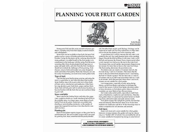 Planning Your Fruit Garden