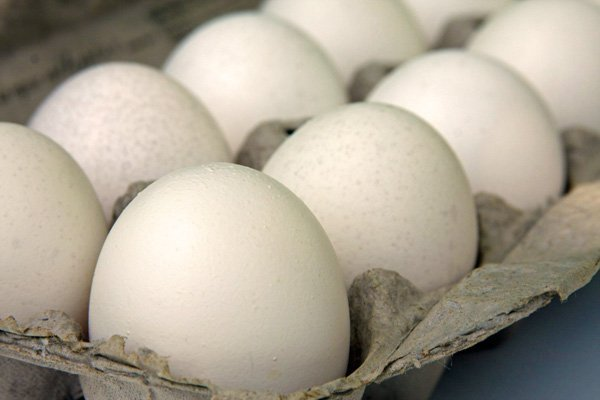 5 Ways to Improve Winter Egg Production