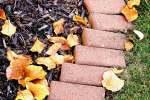 A Brief Guide to 13 Common Mulches