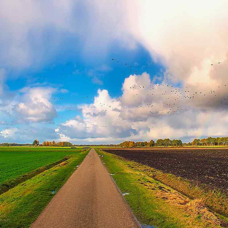 Your Path to Abundant Living in Flyover Country