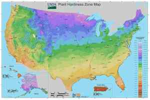 What Type of Climate Does Kansas Have?