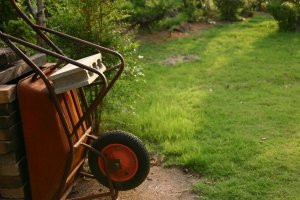 Starting a Garden or Orchard: Logistics