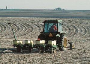 How Does No-Till Farming Work?