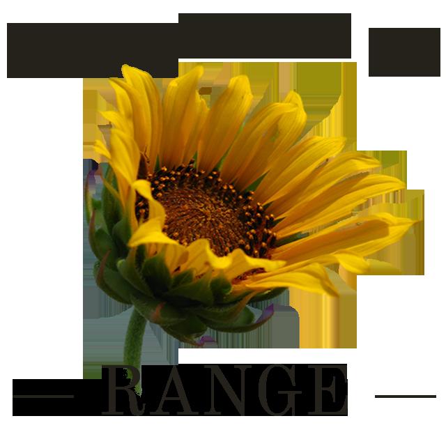 Homestead on the Range
