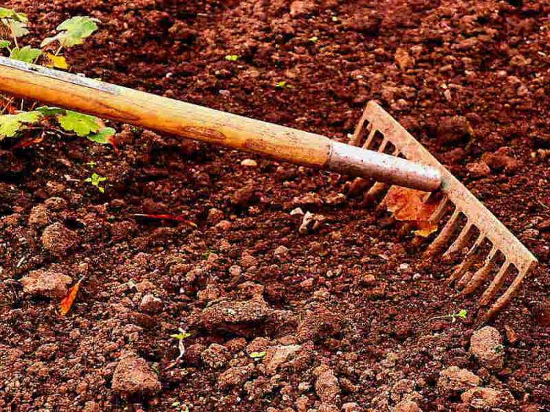 Garden Soil Colors and What They Mean