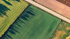 Optimizing Your Land Use
